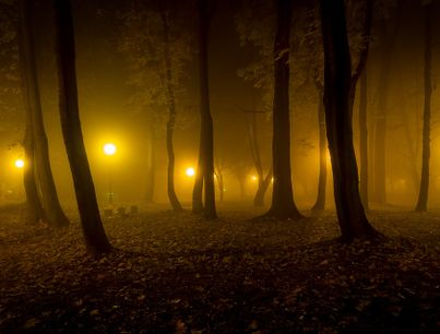 night-2802639_960_720 -